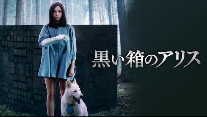 映画『黒い箱のアリス』はHulu・U-NEXT・dTV・Netflixどれで配信?