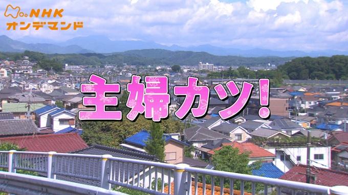 ドラマ『主婦カツ!』はNetflix・Hulu・U-NEXT・dTVどれで配信?