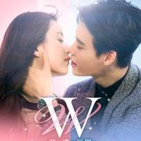 韓国ドラマ『W -君と僕の世界-』はNetflix・Hulu・U-NEXT・dTVどれで配信?