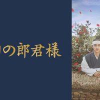 韓国ドラマ『100日の郎君様』はNetflix・Hulu・U-NEXTどれで配信?