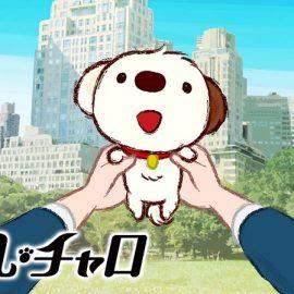 アニメ『リトル・チャロ』はNetflix・Hulu・U-NEXTどれで配信?
